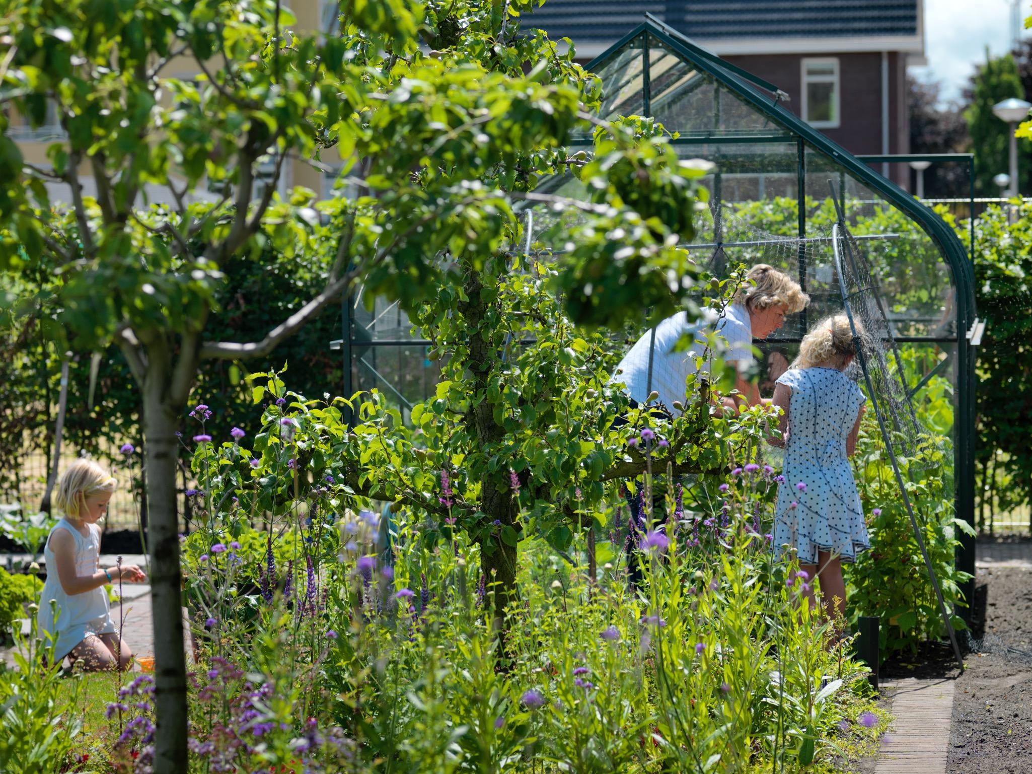 Geerlings Tuinen Eigentijdse tuin