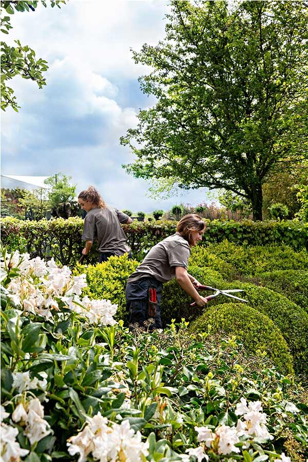 Werken-bij-geerlings-tuinen-03
